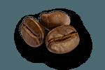 espressobonen | KoffiePartners