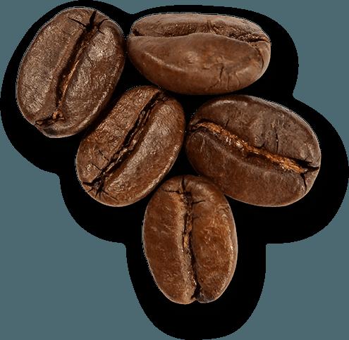 bonen | KoffiePartners