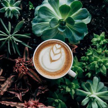 Duurzame koffie echt belangrijk | KoffiePraat | KoffiePartners