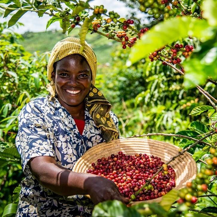 Fairtrade boerin | KoffiePartners