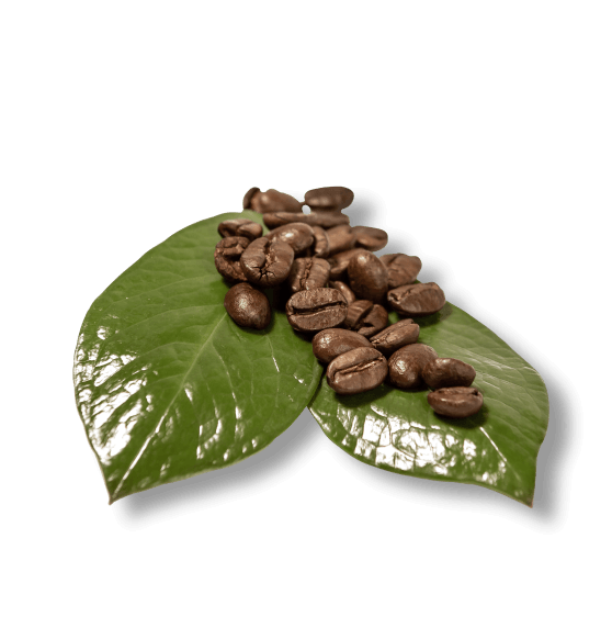 Verantwoorde koffie | Duurzame koffieleverancier | KoffiePartners