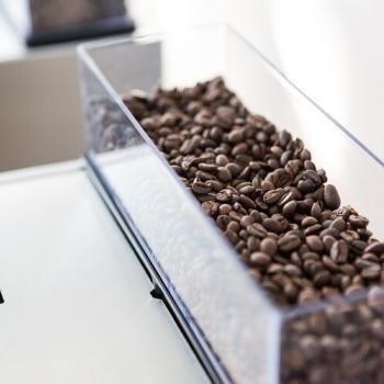 Bonenreservoir Aequator Mexico | KoffiePartners