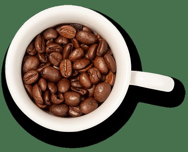 Verse bonenkoffie op het werk | KoffiePartners