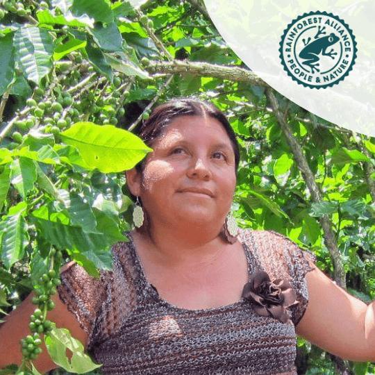 Rainforest Alliance | KoffiePartners